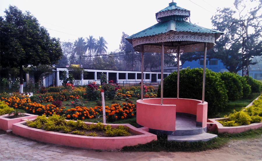 Pabna TSC Garden